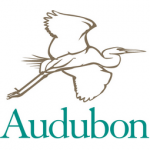 Kevin Owyang's work is used by the Audubon Society